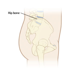 Side view of body with hip bone ghosted in.